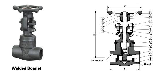 Class 150~1500 Forged Steel Bolt Gate Valve
