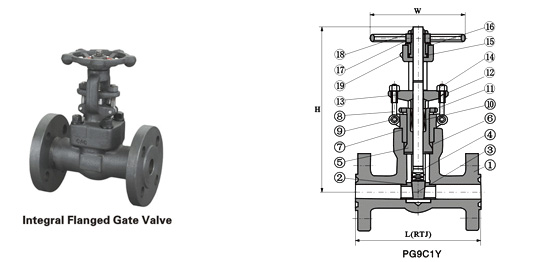 Class 900~2500 Flanged End Pressure-Seal Gate Valve
