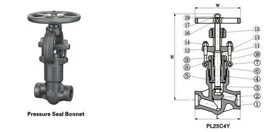 Class 900~2500 Pressure-Seal Globe Valve