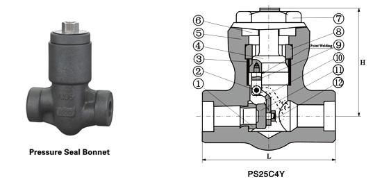 Class 900~2500 Pressure-Seal Swing Check Valve