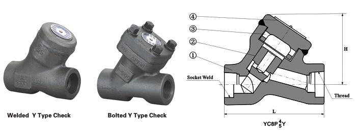 Class 800 Y-Pattern Piston Check Valve